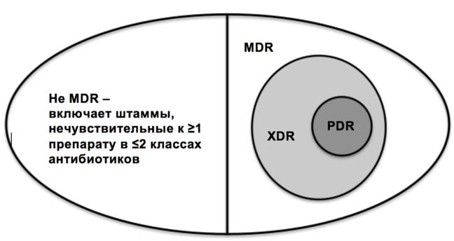Схематический рисунок разделен на секции. Слева помещены бактерии, которые не являются устойчивыми к нескольким лекарственным средствам, включая штаммы, невосприимчивые к одному или более агентам в двух и менее антимикробных категориях. Справа представлены бактерии, устойчивые к нескольким лекарственным средствам.  В этом разделе находится круг, представляющий классы с широкой лекарственной устойчивостью к лекарственным средствам, и существует меньший круг, встроенный в правую сторону большого круга, представляющий панрезистентные бактерии.