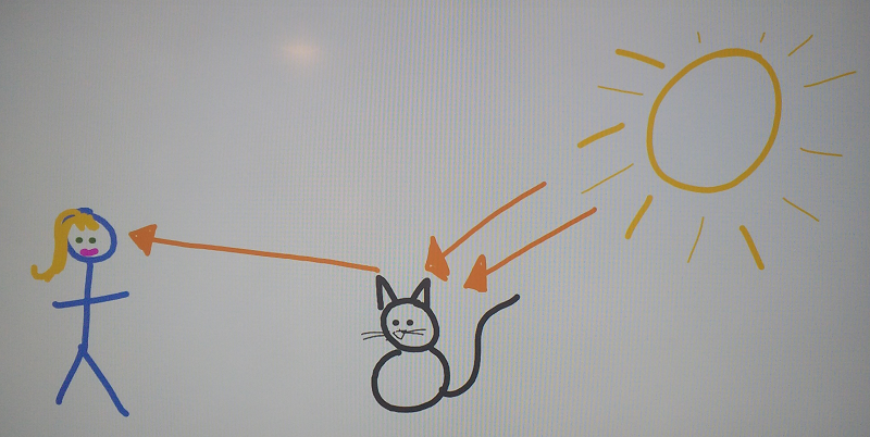 Illustration of student work with correct lines showing light being reflected from an object to the person
