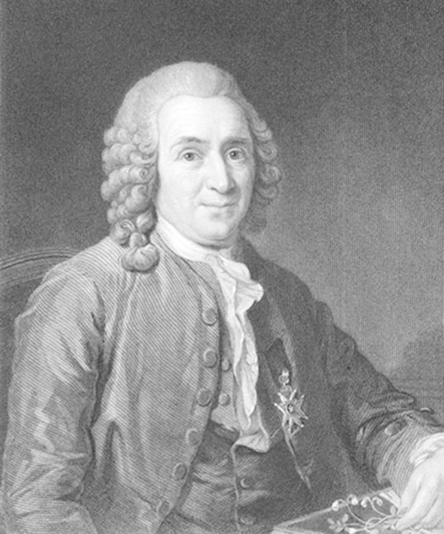 A hand drawn black and white portrait of Linnaeus