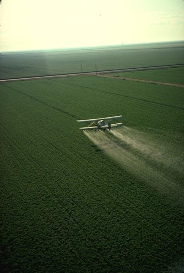 Small aeroplane distributing pesticides over a field of crops