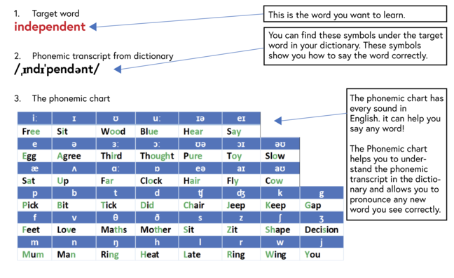 Three things to help you pronounce a new word