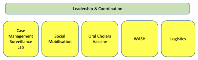 "Green rectangular text box with the text ""Leadership & Coordination"" above five yellow boxes. The text in the yellow boxes from left to right reads: ""Case Management, Surveillance, Lab"", ""Social Mobilization"", ""Oral Cholera Vaccine"", ""WASH"" and ""Logistics""."