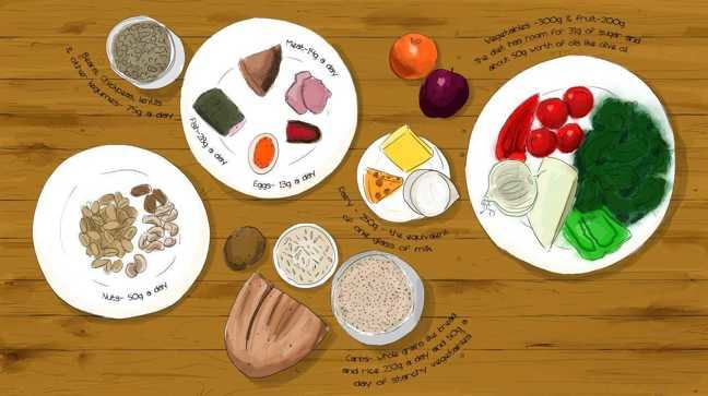 A hand drawn image of food on plates, showing suggested quantities of each food type. A bowl of representing beans, chickpeas, lentils and other legumes - 75g a day; A plate of protein - eggs 13g, fish, 28g, meat 14g; A plate of nuts - 50g a day; Carbohydrates, represented by rice, bread, grains and potato suggesting 232 g-whole grains and 50 g-starchy veg; a plate of dairy products, 250 g cheese or the equivalent of one glass of milk;an orange and a plum - fruit 200g per day; a plate of mixed vegetables -300g; The diet has room for 31g of sugar and about 50g worth of oils like olive oil.