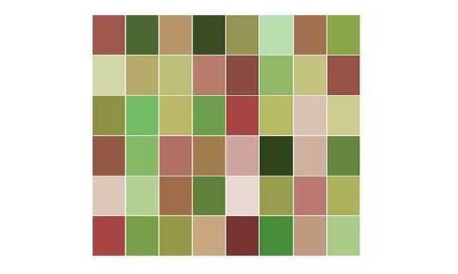 Only 1 colour is repeated in this grid - can see which colour appears twice?