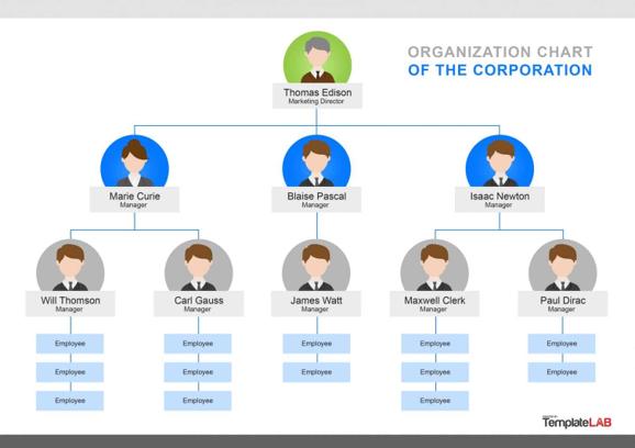 organization chart of the corporation