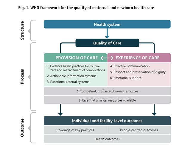 The WHO framework