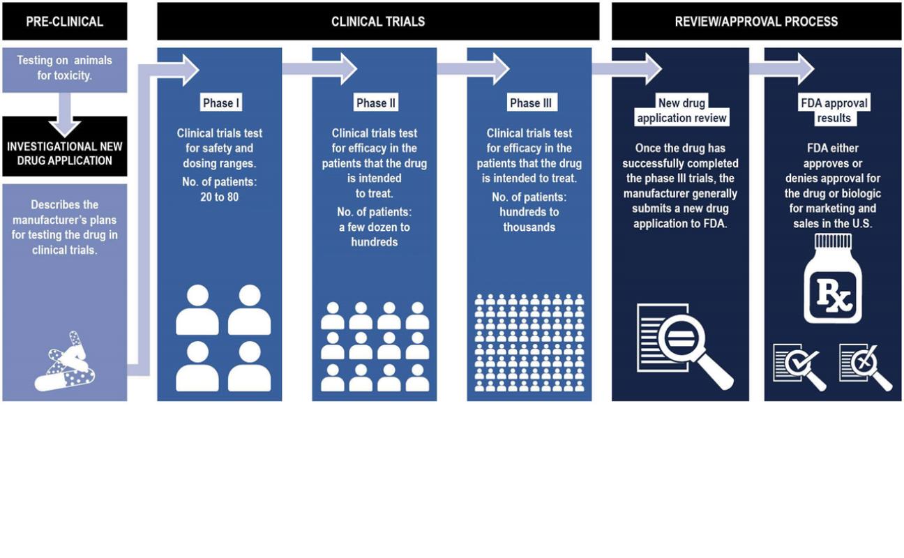 FDA Approval process schematic