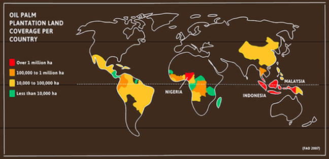 Map illustrating the amount of oil palm plantation land coverage in certain countries. Outline of the world map in white on a brown background. Key shows that red areas equal over one million ha; Orange areas equal 100,000 to one million ha; Yellow areas equal 10,000 to 100,000ha; Green areas equal less than 10,000ha. Indonesia and Nigeria are red areas. Columbia, Equador, Democratic Republic of Congo, Cambodia and Thailand are orange areas. Malaysia, China, Angola, Brazil, and Mexico are yellow areas. Madagascar, Tanzania, Senegal, Panama, Coasta Rica and Guatemala are green areas.