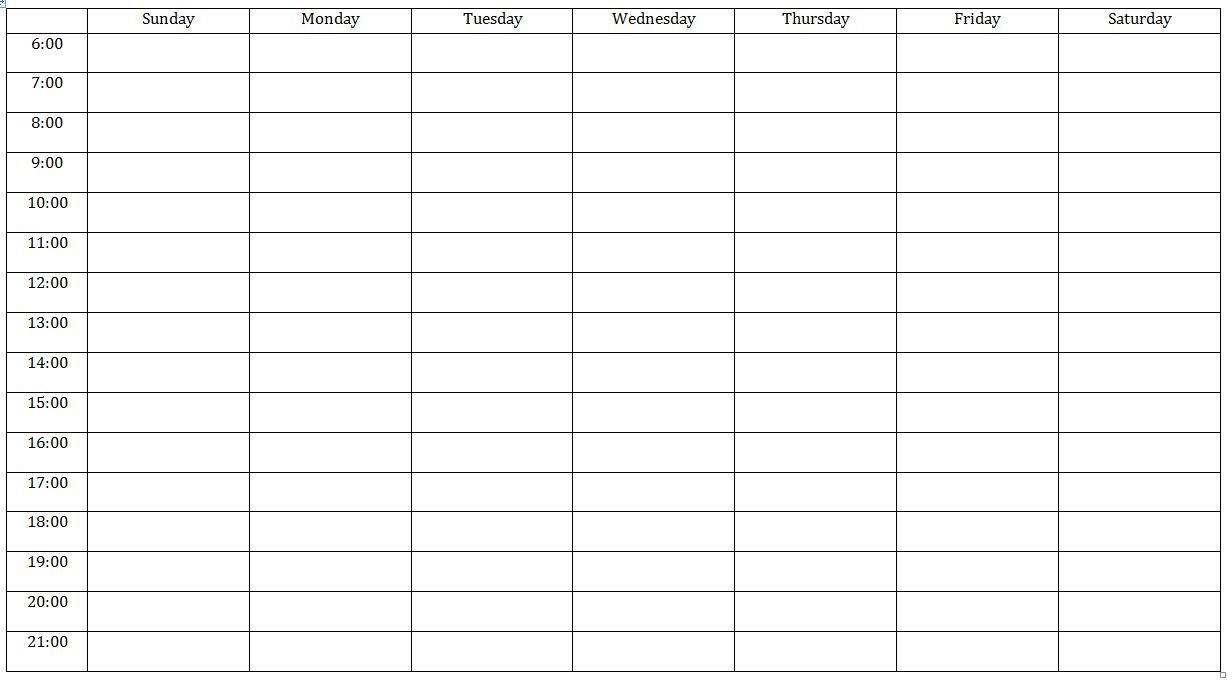 Sample monitoring diary template: