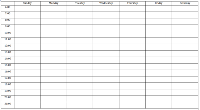 Sample monitoring diary template: