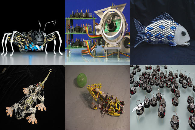 A montage of bioinspired robots