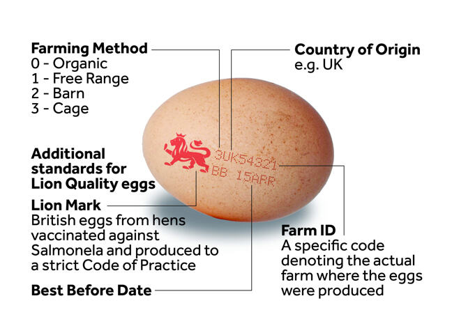 Image of an egg stamped with the code 'Lion Mark UK54321 BB APR' and explanatory labels added as follows. 'Lion mark': British eggs from hens vaccinated against Salmonela and produced to a strict code of practice. '3': Farming method 0 - Organic, 1 - Free Range, 2- Barn, 3 Cage. 'UK': Country of Origin. '54321' Farm ID: A specific code denoting the actual farm where the eggs were produced. 'BB 15APR': Best Before Date