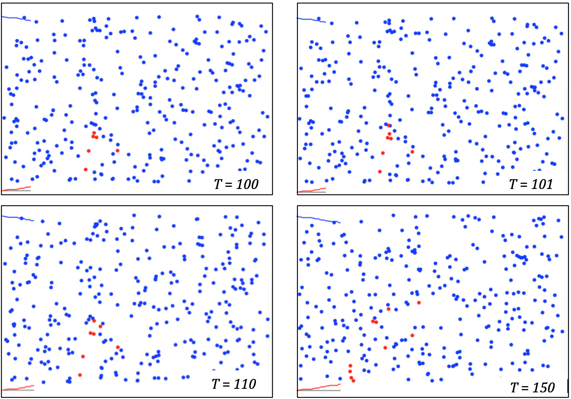 Four panels. In each is a simulation of red and blue dots. The panels are labels t=100, t=101, t-110 and t=150