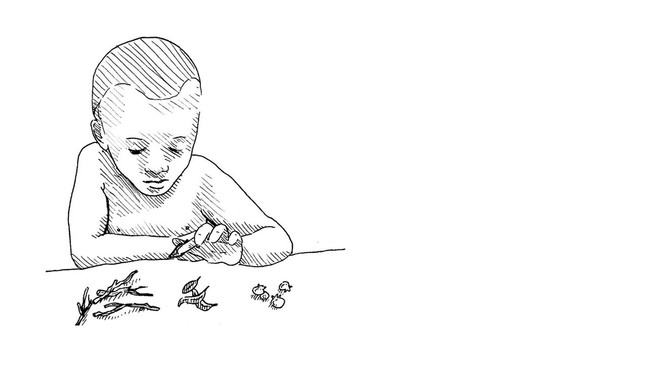 Illustration of a young boy sorting different leaves, twigs and seeds
