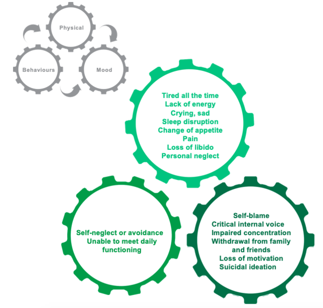 Diagram showing the depression cycle. Three cogs 1. Physical 2. Mood 3. Behaviours. All linked in a cycle. Examples of physical symptoms: Tired all the time, lack of energy, Crying, sad, sleep disruption, change in appetite, pain, loss of libido, personal neglect. Examples of how mood may be effected: Self-blame, critical internal voice, impaired concentration, withdrawal from family & friends, loss of motivation, suicidal ideation. Examples of behaviours exhibited: Self-neglect or avoidance, unable to meet daily functioning.
