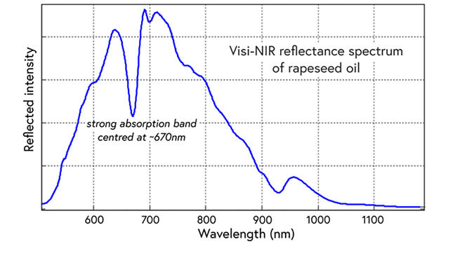 NIR Spectrum of rapeseed oil
