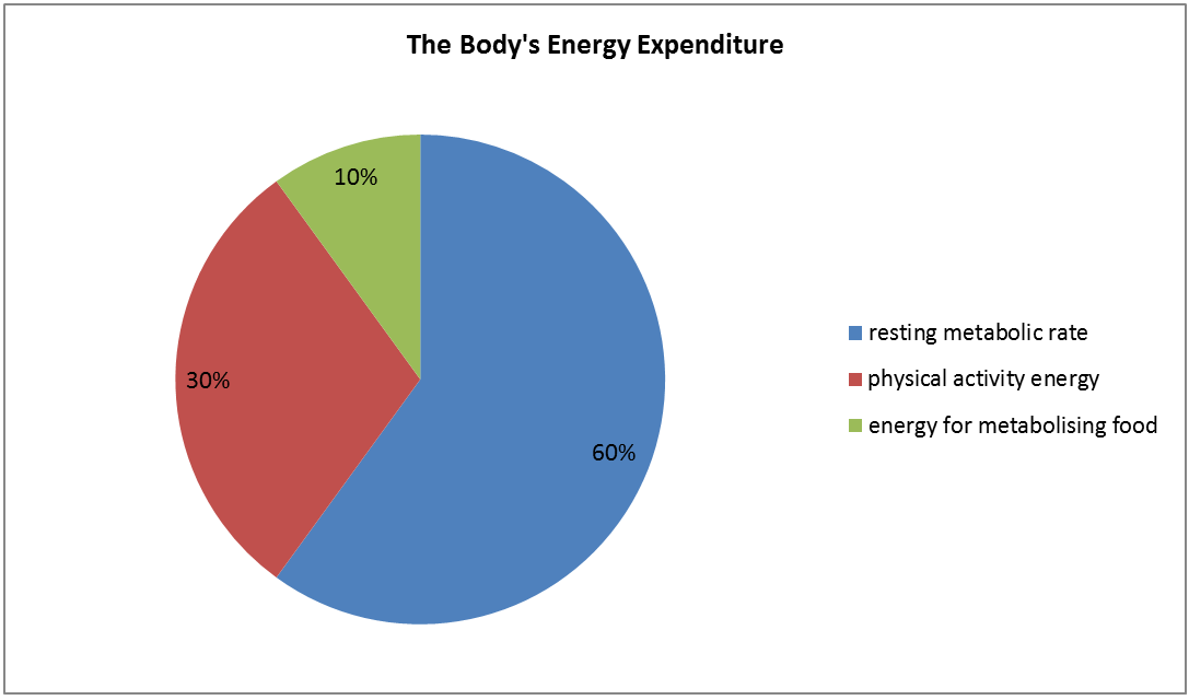 Graph showing the percentages of the body's energy expenditure. These include resting metabolic rate: 60%, physical activity energy: 30%, energy for metabolising food: 10%