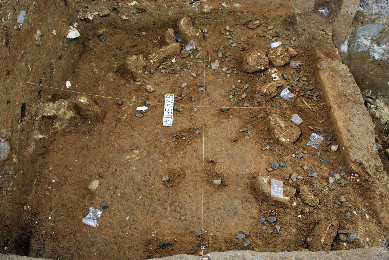 Photograph of stone artefacts and bones