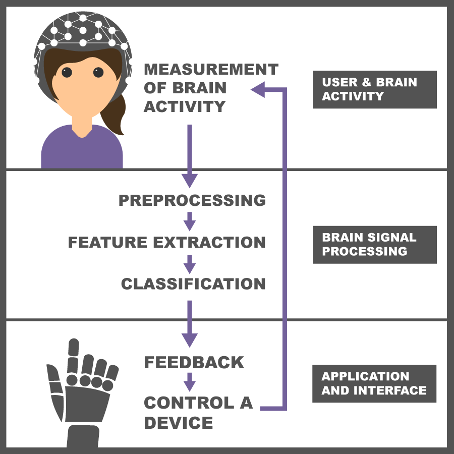 A diagram that shows the flow between the seven stages of using a BCI system - measurement of brain activity, preprocessing, feature extraction, classification, feedback, control a device - feeding back again into measurement of brain activity