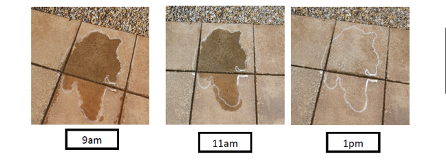 Example puddle photos showing puddle water outline changing during the day (reducing)