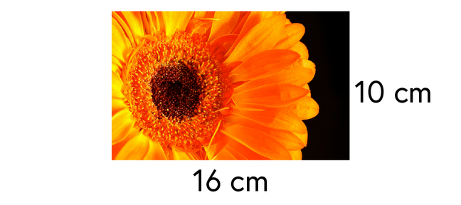 A photo of dimension 16cm on the base and 10cm on the height