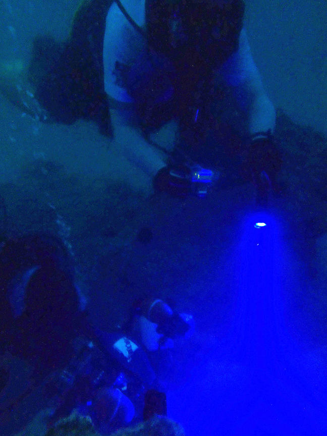 Divers underwater using a blue torch in dark water.