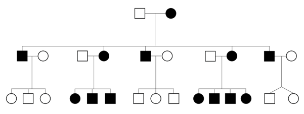 Pedigree depicting mitochondrial inheritance
