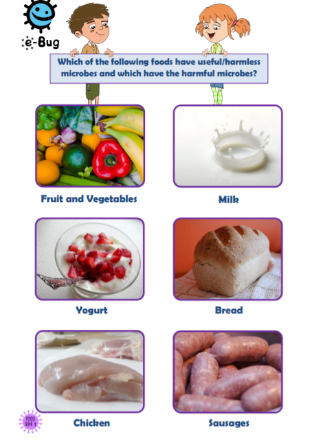 Cartoon image asking 'which of the following foods have useful/harmless microbes and which have harmful microbes?' then images of fruit & veg, milk, yogurt, bread, chicken, and sausages.