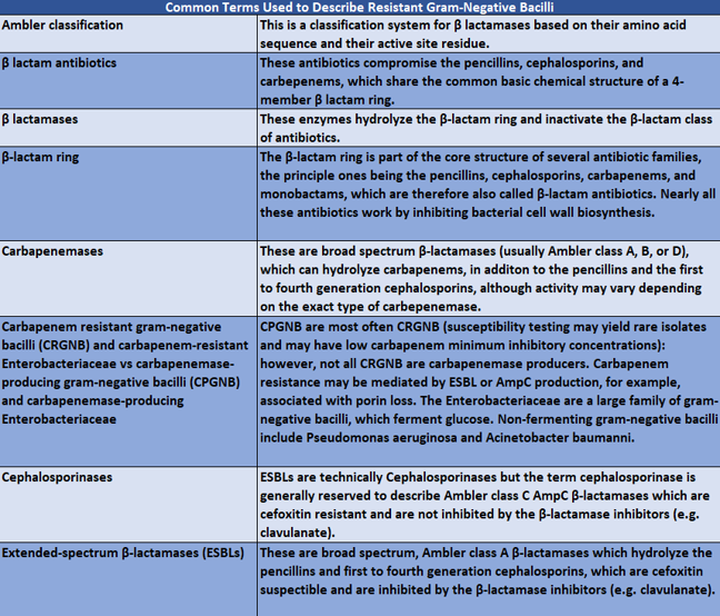 Table adapted from those in Emerging Issues in Gram-Negative Bacterial Resistance.