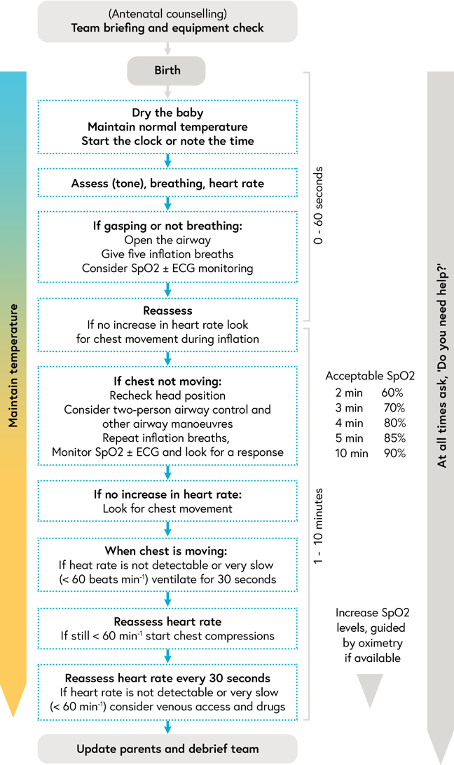 Algorithm showing the order of the neonatal team actions as they care for a preterm baby in the first 10 minutes of life, as described below
