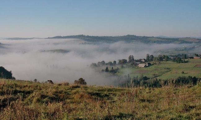Photograph of fog sitting in a valley