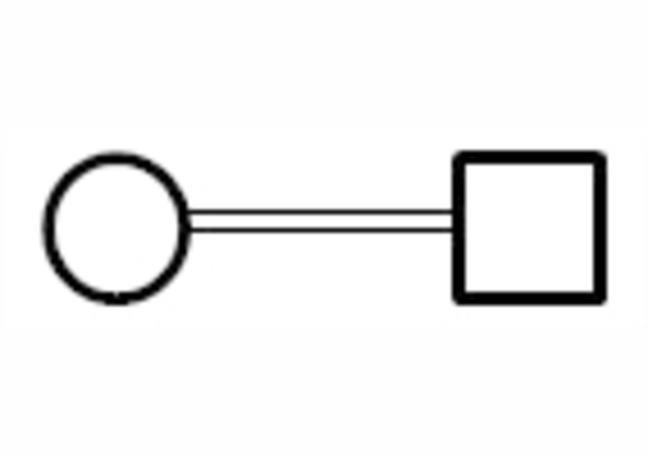 Two Lines Between Symbol