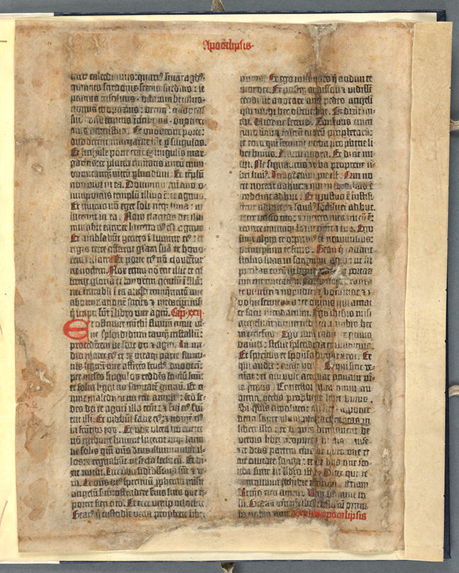 An example of blackletter type: Gutenberg Bible, Fol. 317v. © The Board of  Trinity College Dublin