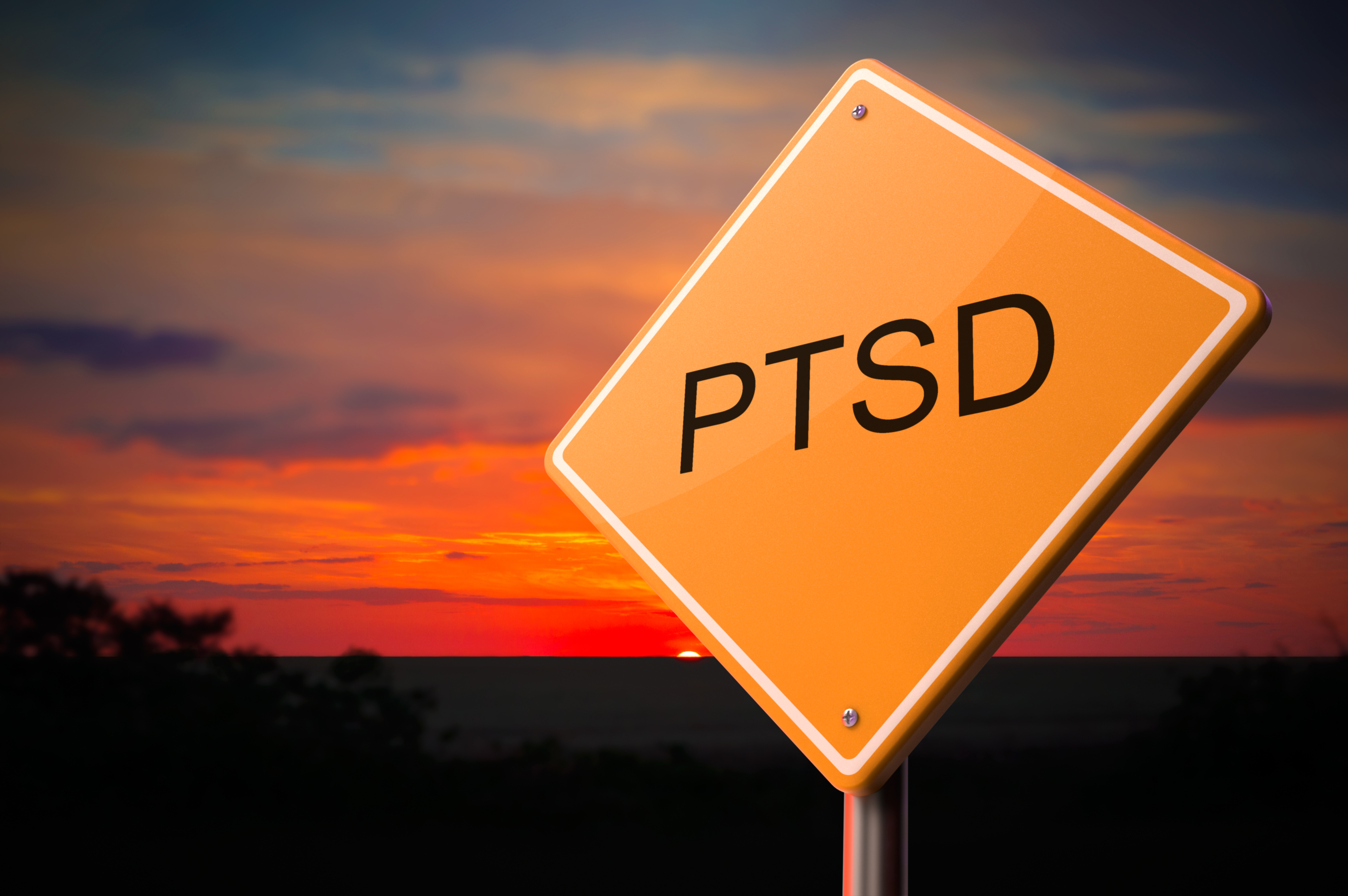 A sign with the letters PTSD