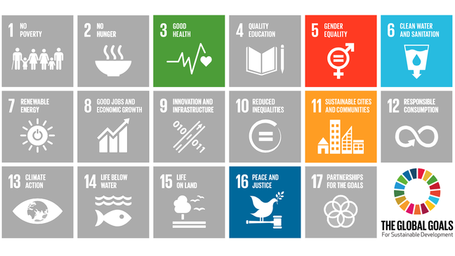The SDGs we will be focusing on in this course highlighted in a square with the other SDGs; SDG 3, 5, 6, 11 and 16.