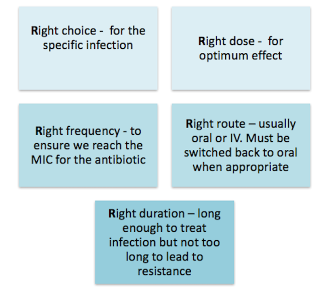 5 Rs: Right choice for the specific infection; Right dose for optimum effect; Right frequency to ensure we reach the MIC for the antibiotic; Right route usually oral or IV but must be switched back to oral when appropriate; Right duration - long enough to treat the infection but not too long to lead to resistance