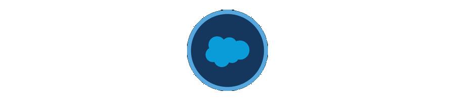 Salesforce Platform basics Badge