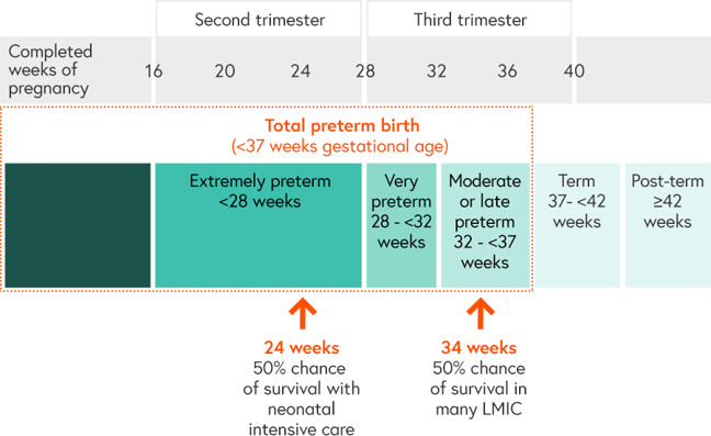 Illustration shows how 50% of preterm babies born at 24 weeks gestational age survive when provided with neonatal intensive care compared to the 50% of preterm babies born at 34 weeks gestational age who survive when born in low and middle income countries.