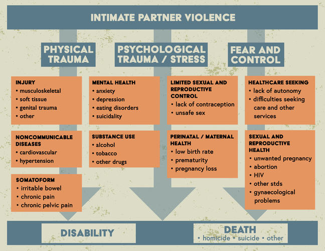 A diagram showing intimate partner violence broken down into three pathways - physical trauma, psychological trauma and stress, and fear and control - through which intimate partner violence can lead to adverse health effects.