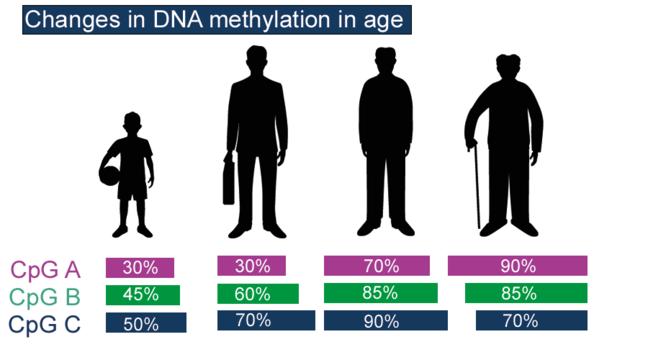Age identification