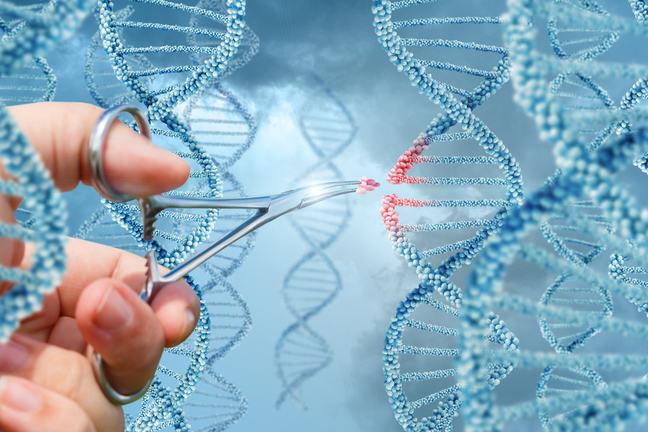 Editing a DNA strand