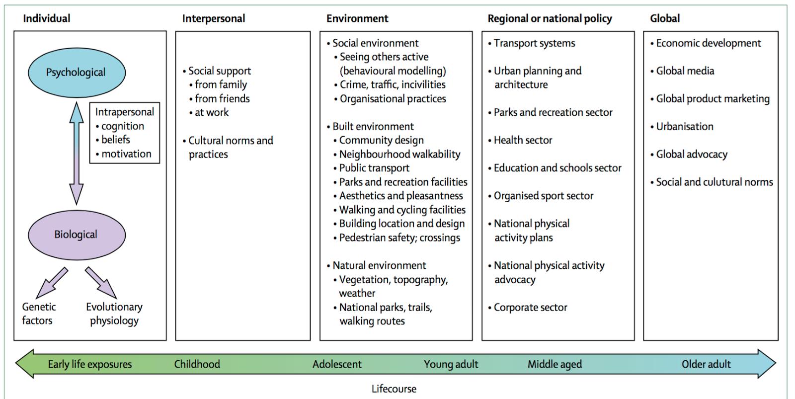 Ecological model diagram