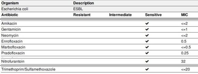 The AST results from an _E. coli_ isolate.