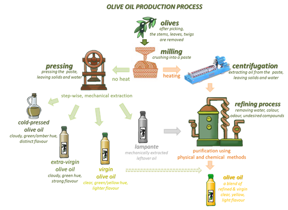 The olive oil production process showing a forked path to the final product. Both paths involve milling of the olives. One path then involves pressing, which does not require heat, to produce oils by mechanical extraction. The other path involves heating and centrifugation followed by refining (purification) by physical and chemical methods, to produce the final product.