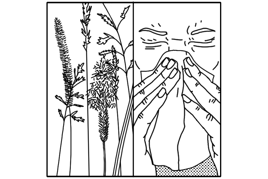 Comic strip depicting the discovery of infections and allergies.