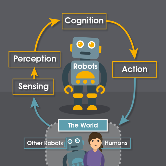 A diagram demonstrating a RAS feedback loop. A robot senses and perceives the world, which feeds into it's cognition, influencing it's actions which then have implications in the world.