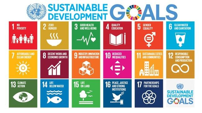 The 17 Sustainable Development Goals, including Goals such as 'No Poverty', 'Good Health and Well-Being', and 'Quality Education'.