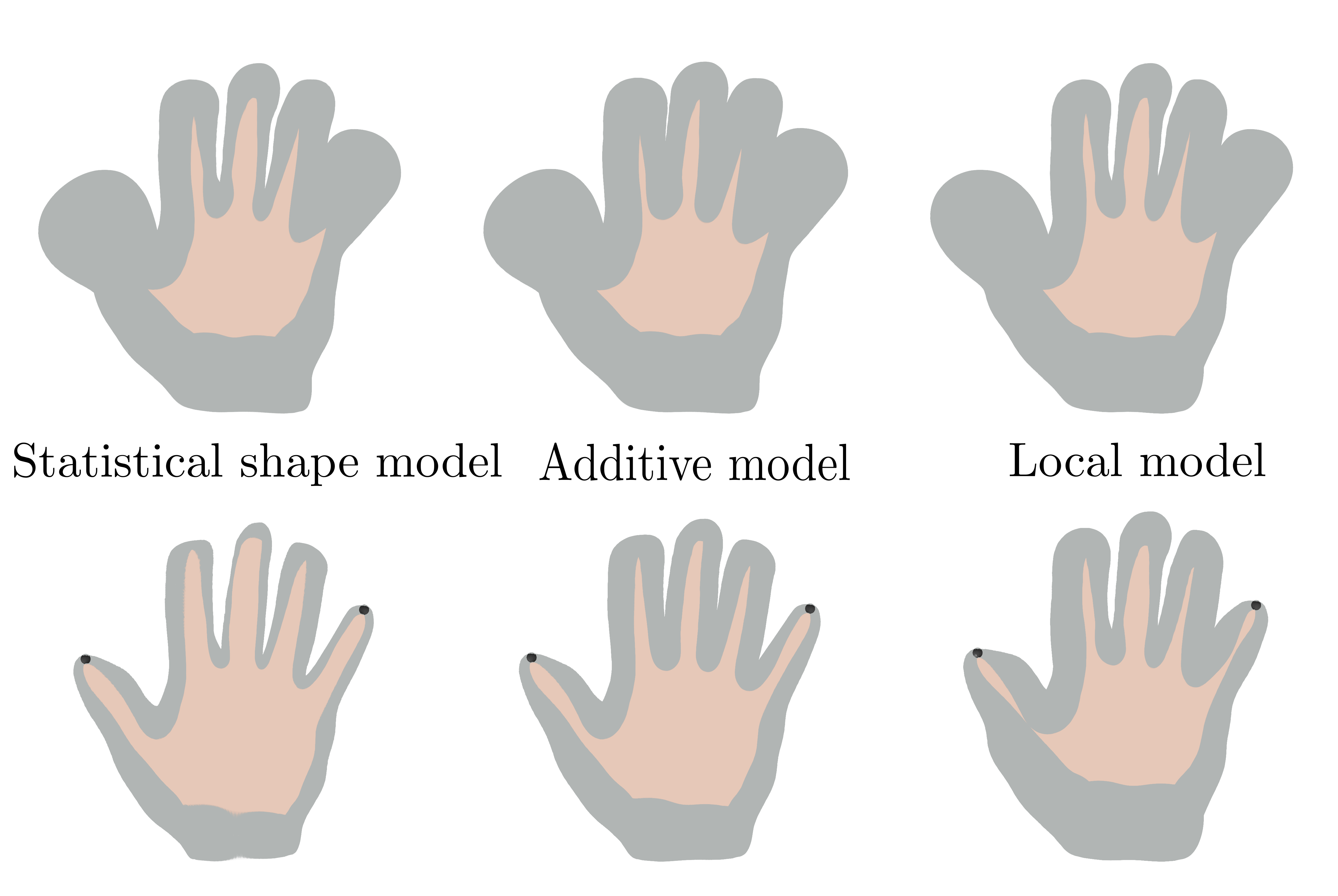Confidence regions for different statistical shape models