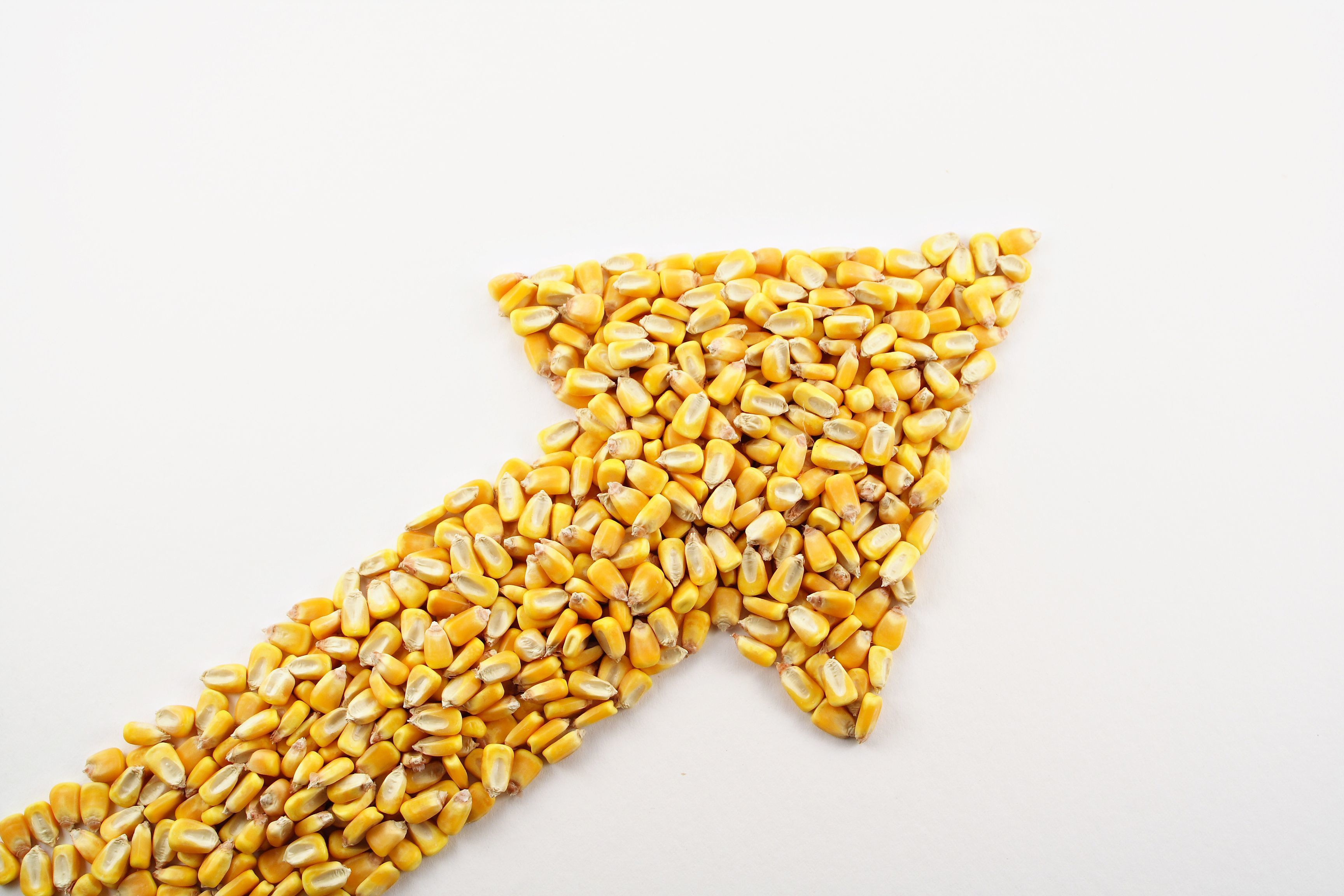 An arrow filled with corn, pointing to the top right of the image