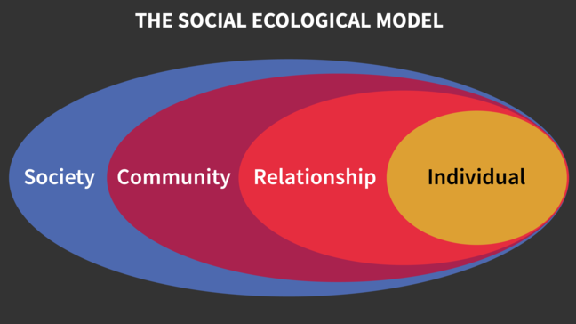 Social Ecological Model of Health. This graph shows four interlapping spheres with individual on the right hand side followed by relationship, community, and society.
